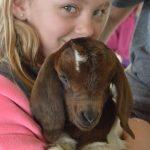 Alburnett student with baby goat